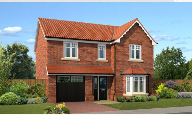 Thumbnail Detached house for sale in Old Hall Drive, Retford