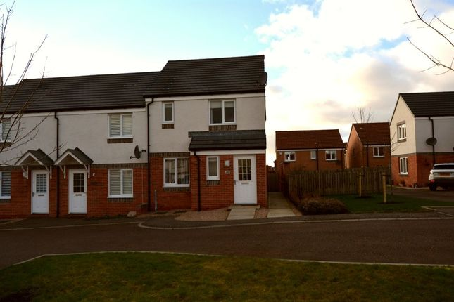 Thumbnail Terraced house to rent in Mcnee Place, Redding, Falkirk