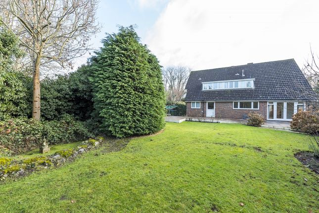 Thumbnail Property to rent in Church Meadow, Surbiton