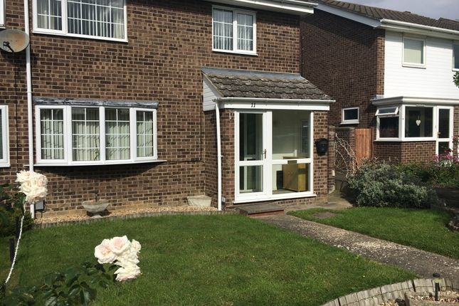 Thumbnail Semi-detached house to rent in Birkdale Road, Putnoe