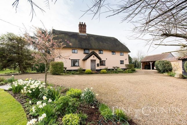 Thumbnail Cottage for sale in High Road, Bressingham, Diss