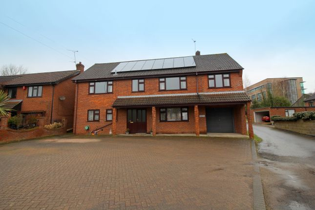 Thumbnail Detached house for sale in Yarmouth Road, Thorpe St. Andrew, Norwich