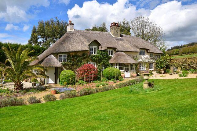 Thumbnail Land for sale in Shute, Axminster, Devon