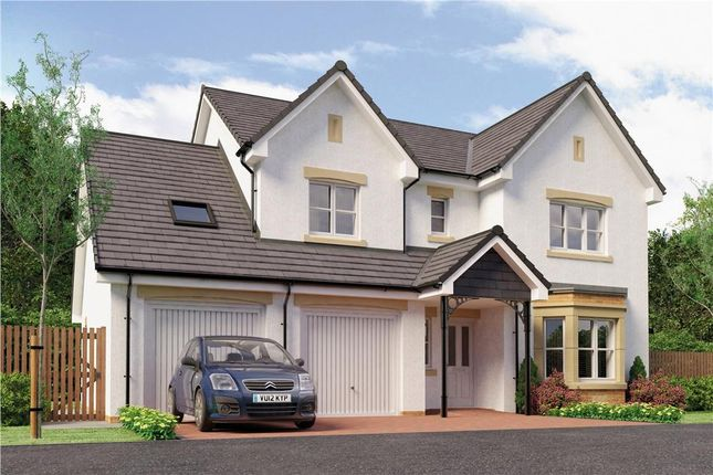 "Thumbnail Detached house for sale in ""Humber"" at Broomhouse Crescent, Uddingston, Glasgow"