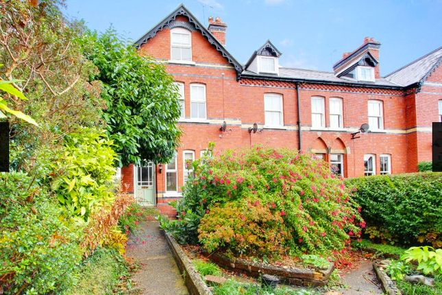 Thumbnail Terraced house to rent in Cambrian Villas, Meadow Place, Mold, Flintshire