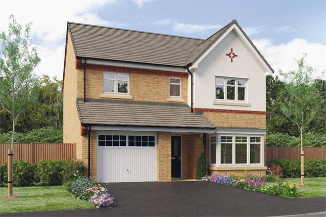 "Thumbnail Detached house for sale in ""Ashbery"" at Leeds Road, Thorpe Willoughby, Selby"