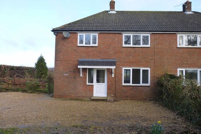 Thumbnail Semi-detached house to rent in Lyeway, Ropley, Alresford