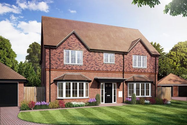 Thumbnail Detached house for sale in Amlets Place, Amlets Lane, Cranleigh