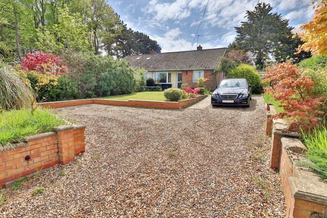 Thumbnail Semi-detached bungalow to rent in Lowestoft Road, Beccles