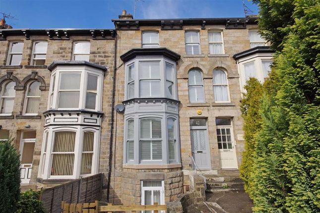 Thumbnail Property to rent in Cheltenham Mount, Harrogate, North Yorkshire