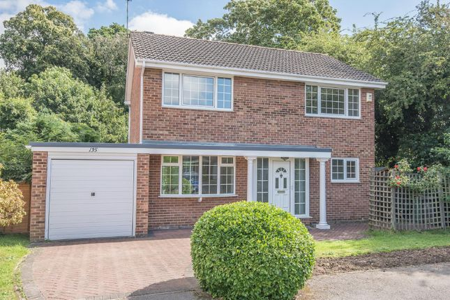 Thumbnail Detached house to rent in Dringthorpe Road, York
