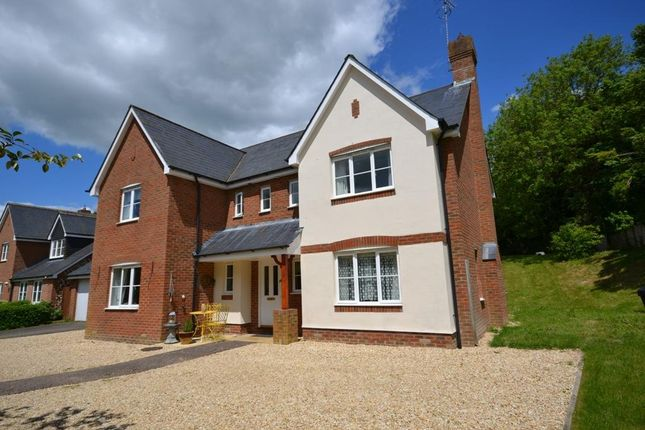 Thumbnail Property for sale in Hillside, Whitchurch