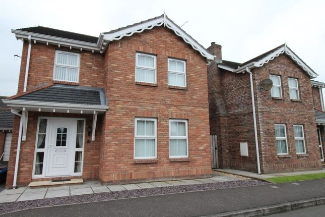 Thumbnail Detached house to rent in Wellington Park Mews, Moira, Craigavon