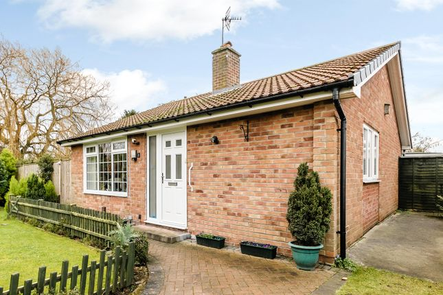 Thumbnail Detached bungalow for sale in Staithes Close, York