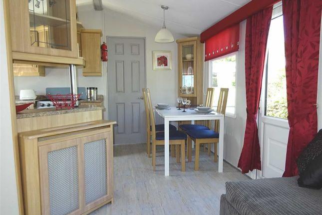 Kitchen / Dining Area: