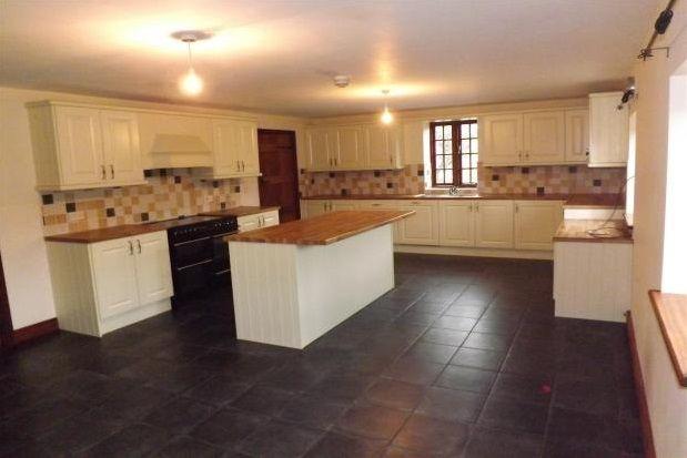 Thumbnail Semi-detached house to rent in Llandyrnog, Denbigh