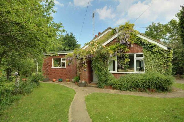Thumbnail Detached bungalow for sale in Ellesmere Road, Rochford
