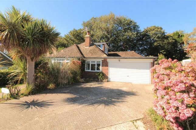 Thumbnail Detached bungalow for sale in Daresbury Close, Bexhill On Sea, East Sussex