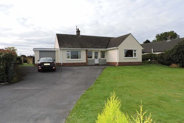Thumbnail Detached bungalow for sale in Gwynfe, Llangadog
