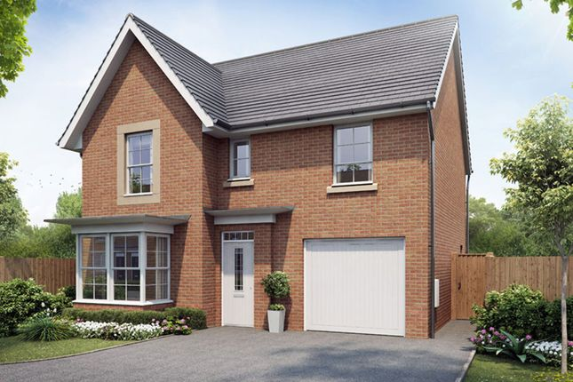 """Thumbnail Detached house for sale in """"Somerton"""" at Park Hall Road, Mansfield Woodhouse, Mansfield"""