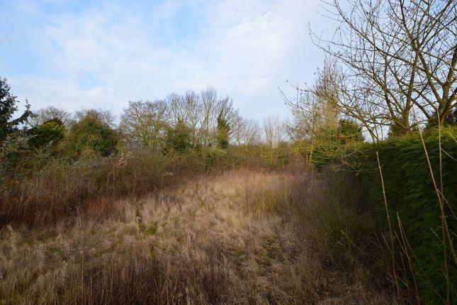 Thumbnail Land for sale in Nunnery Street, Castle Hedingham, Halstead