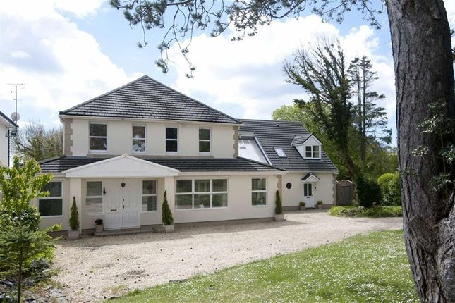 7 bed detached house for sale in Caswell Road, Caswell, Swansea
