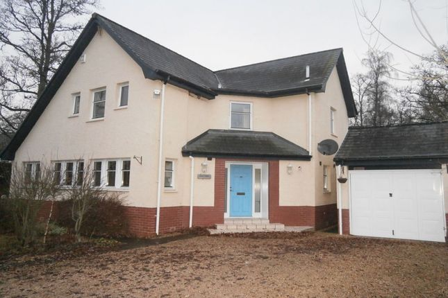Thumbnail Detached house to rent in Auchterarder