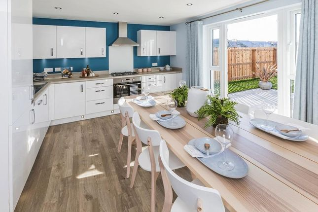 """4 bedroom detached house for sale in """"Fenton"""" at South Larch Road, Dunfermline"""