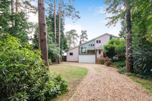 Thumbnail Detached house for sale in Camberley, Surrey, .