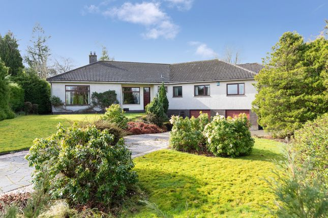 Thumbnail Detached bungalow for sale in 7 Thorn Avenue, Thorntonhall