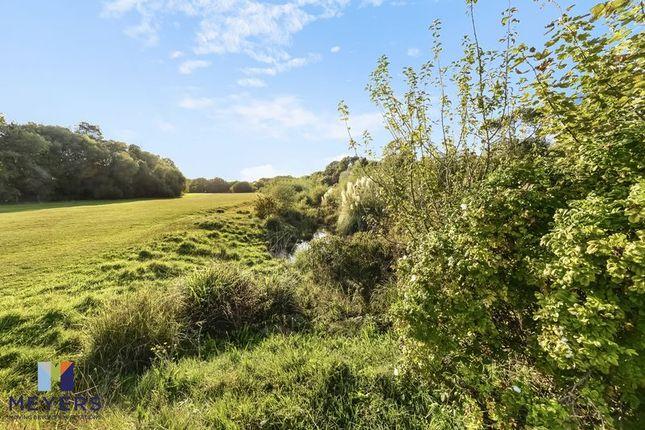 Nature Reserve of Evering Avenue, Alderney, Poole BH12