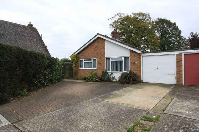 Thumbnail Detached bungalow for sale in Scylla Close, Maldon, Essex