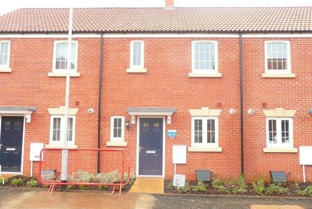 Thumbnail Terraced house to rent in Pryors Road, Kettering