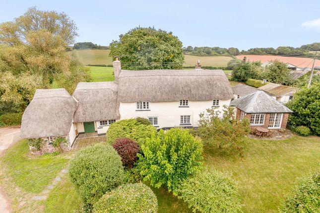Thumbnail Detached house for sale in Chilton, Crediton, Devon