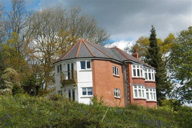 Thumbnail Detached house for sale in Capel Seion Road, Pontyberem, Llanelli
