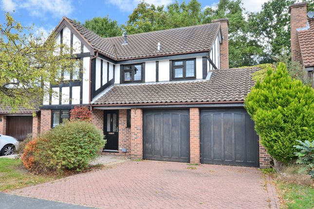 Thumbnail Detached house to rent in Tenby Road, Frimley, Camberley