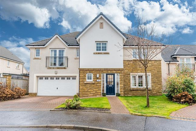 Thumbnail Detached house for sale in Young Crescent, Larbert