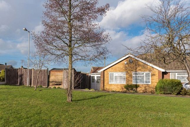 Thumbnail Semi-detached bungalow for sale in Ripley Road, Luton
