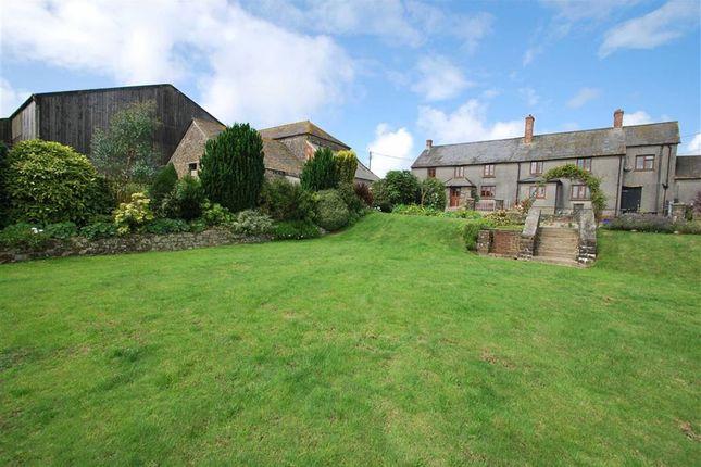Thumbnail Farm for sale in Woodford, Bude