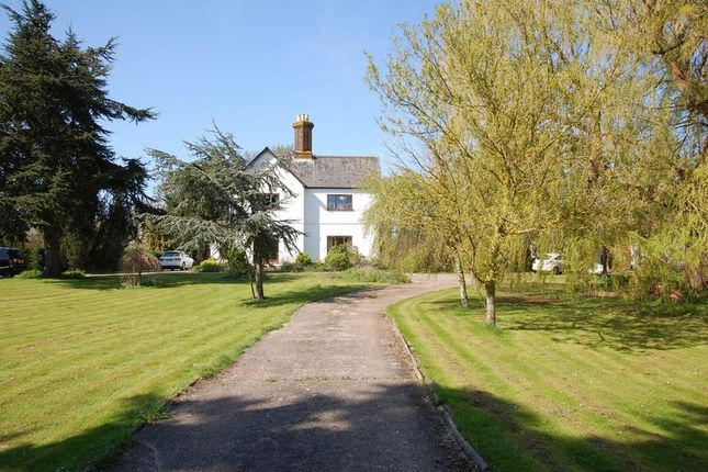 Thumbnail Detached house for sale in Church Road, Bulphan, Upminster