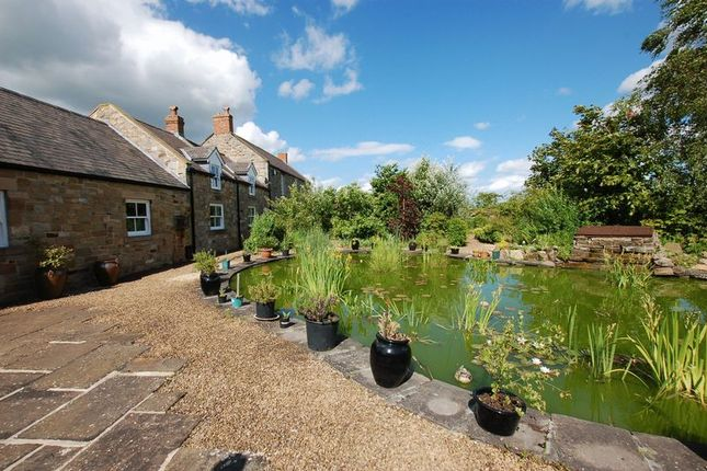 Thumbnail Detached house for sale in Berwick Hill, Newcastle Upon Tyne