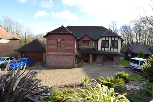 Thumbnail Detached house for sale in St. Kitts Close, St Leonards-On-Sea, East Sussex