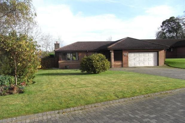 Thumbnail Detached bungalow to rent in Lethame Gardens, Strathaven