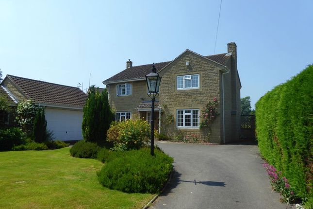 Thumbnail Detached house for sale in East Lambrook, South Petherton