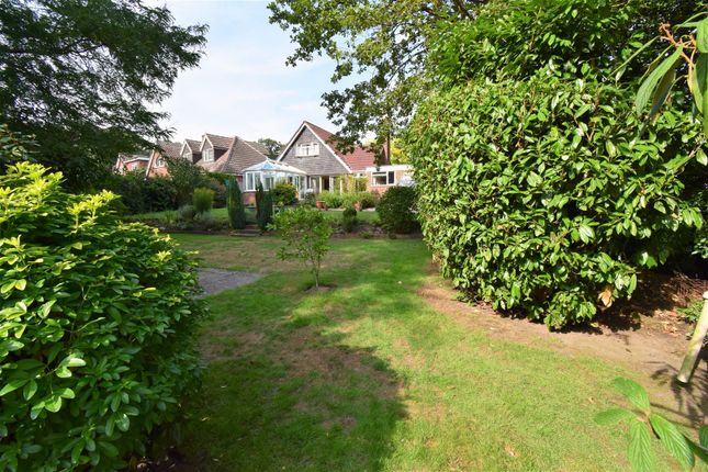 Thumbnail Property for sale in Laurel Crescent, Woodham, Addlestone