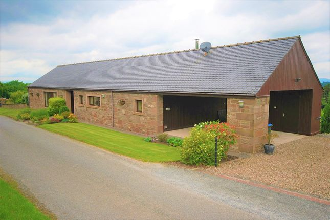 Thumbnail Detached bungalow for sale in Perth