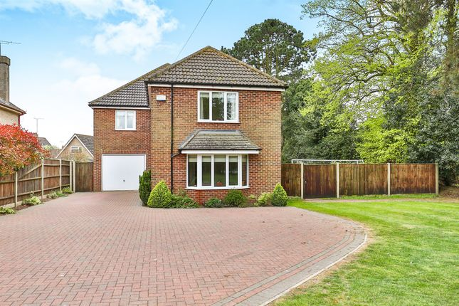 Thumbnail Detached house for sale in Old Road, Acle, Norwich