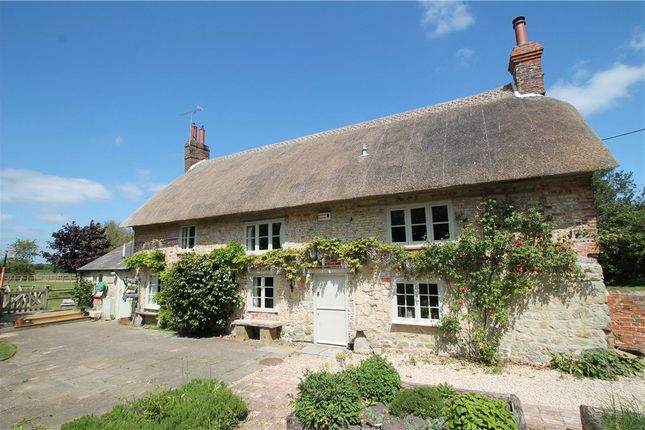 Thumbnail Detached house for sale in The Street, Motcombe, Shaftesbury, Dorset