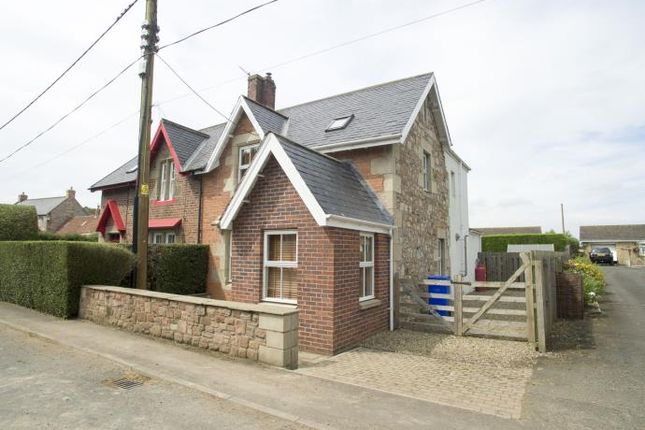 Thumbnail Semi-detached house to rent in Bowsden, Berwick-Upon-Tweed