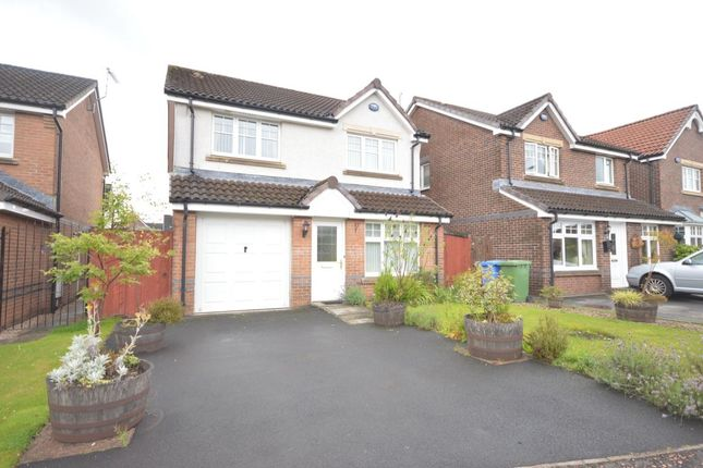 Thumbnail Detached house to rent in Highlander Way, Tullibody, Alloa